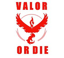 VALOR OR DIE Photographic Print