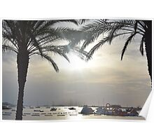 Sunset Amongst Palm Trees Poster