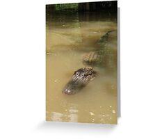 Swamp Gator Greeting Card