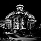 Allan Gardens Conservatory Palm House Toronto Canada by Brian Carson