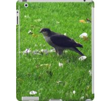 oh dear sparrowhawk raided my bird table iPad Case/Skin