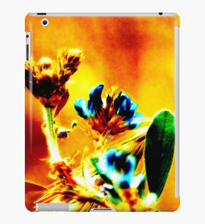 Sheen iPad Case/Skin