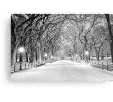 Cental Park New York, NY  winter scene Metal Print