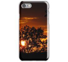 Golden Sunsetting iPhone Case/Skin