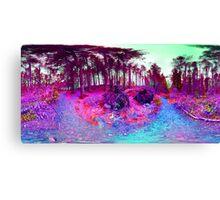 Nature falls into colour Canvas Print