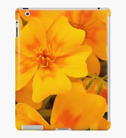 Tagette Blossoms Macro iPad Case/Skin