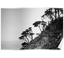 Point Lobos III BW Poster