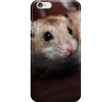 Inquistion iPhone Case/Skin