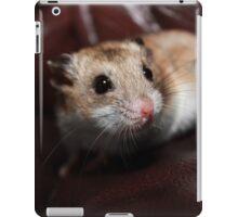 Inquistion iPad Case/Skin