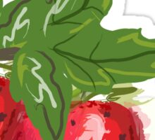 Strawberry Botanical Sticker