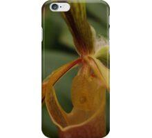 Bristle Orchid  iPhone Case/Skin