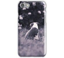 Little Blue  iPhone Case/Skin