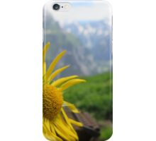 On Top and Resting iPhone Case/Skin