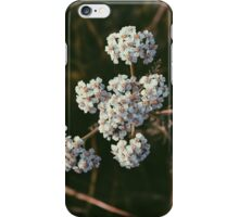 All in Due Time iPhone Case/Skin