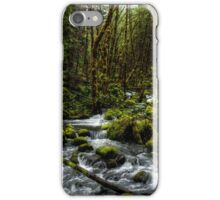 It's About Time  iPhone Case/Skin