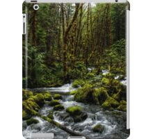 It's About Time  iPad Case/Skin