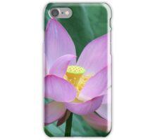 Lotus in Bloom iPhone Case/Skin