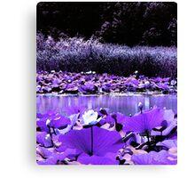 White Water Lotus Canvas Print