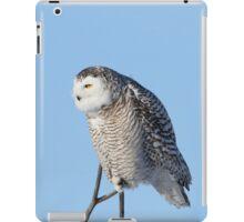 I've got a hunch iPad Case/Skin
