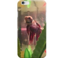 Dean The Betta Fish iPhone Case/Skin