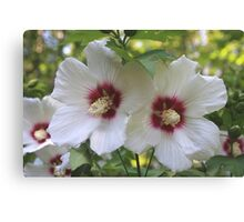 White Exotic Flowers Canvas Print
