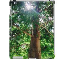 Sunshine Cypress iPad Case/Skin