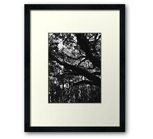 Southern Gothic Framed Print