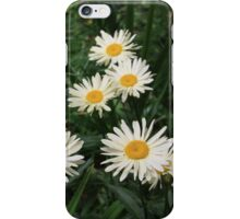 Field of White Daisies iPhone Case/Skin