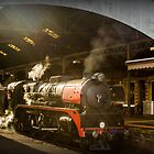 City of Melbourne Steam Train #4 by bekyimage