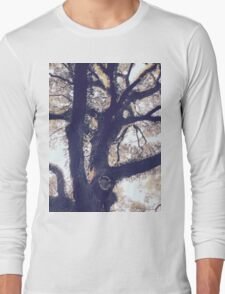 Branching Oak Long Sleeve T-Shirt