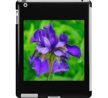 Dwarf Iris Portrait iPad Case/Skin