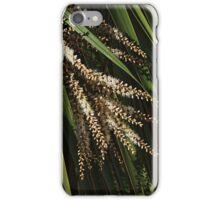 Ti kouka flowers iPhone Case/Skin