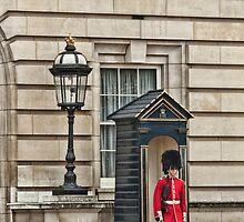 Still On Guard by photograham