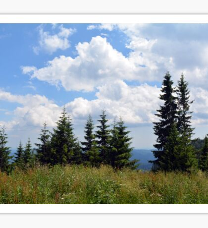Natural scenery with trees and cloudy sky. Sticker