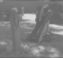 Cemetery. St. Peters. N.S.W. by VenturAShot