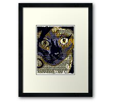 AMY WINE CAT by RootCat Framed Print