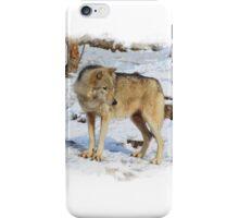 Grey Wolf in Snow Winter Scene iPhone Case/Skin