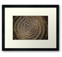 straw shield  Framed Print