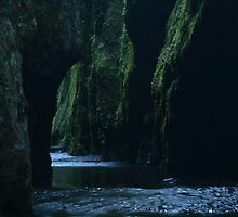 Oneonta Gorge by pacifichawk