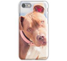 Hazel the Pitbull - At the Pond iPhone Case/Skin