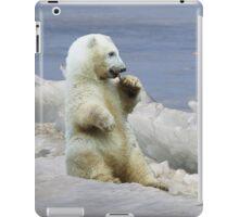 Cute Polar Bear Cub & Arctic Ice  iPad Case/Skin