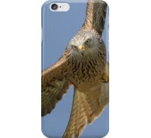 Red Kite  iPhone Case/Skin