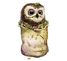 Owl In A Burrito Photographic Print