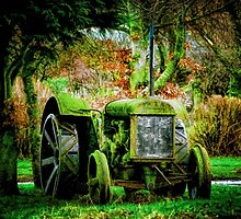 Old Tractor by Beverly Watson