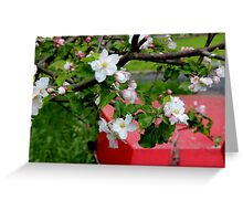 Blossoms and a boat Greeting Card