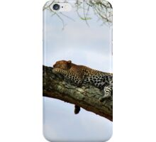 Africa V iPhone Case/Skin