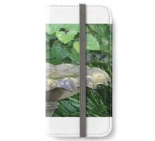 Blue Jay at the birdbath iPhone Wallet/Case/Skin