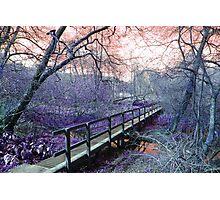 Obscure Landscape Photographic Print