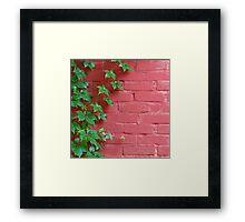 Brick and Vines Framed Print