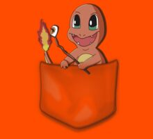 Pocket Charmander by joneskey